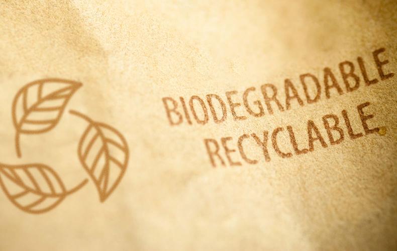 Fabriquer des essuie-tout biodégradables et fiables