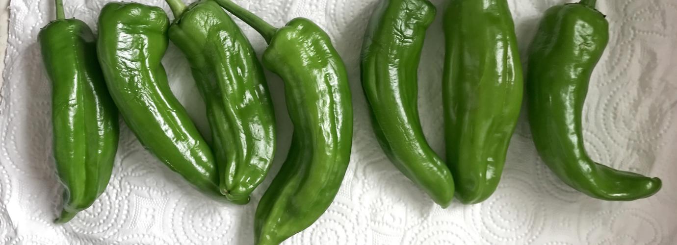 Comment conserver des légumes frais avec du papier essuie-tout